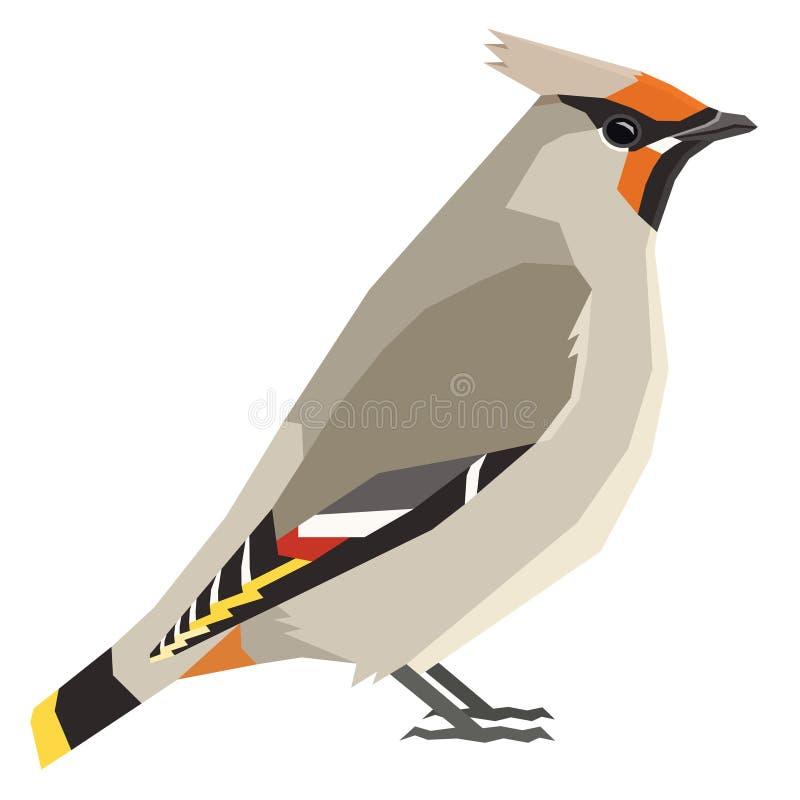 Böhmischer Waxwing Vogelsammlung Vektorillustration lokalisierte Gegenstand lizenzfreie abbildung