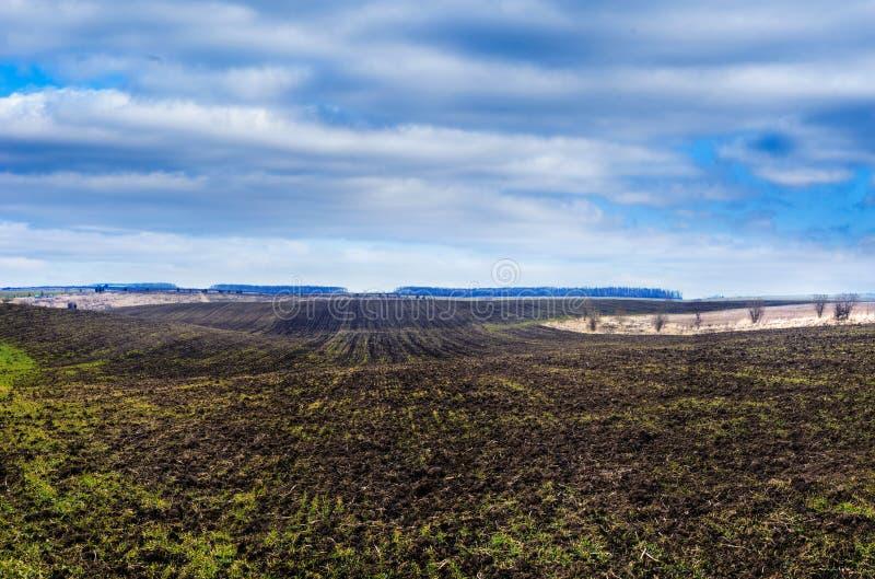 Bölja det plogade fältet i tidig vår, molnhimmel arkivfoto