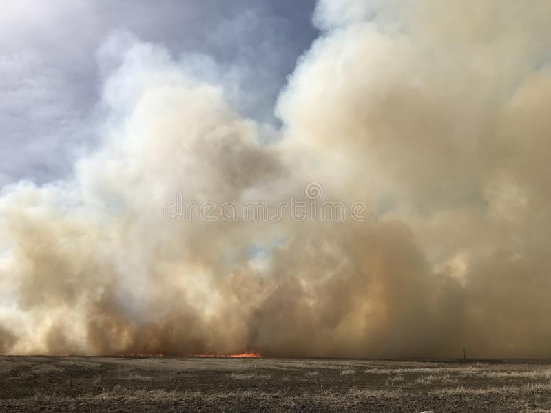 Bölja vita moln av rök från en skogsbrand fotografering för bildbyråer