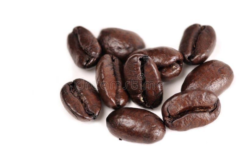 bönakaffe royaltyfri bild