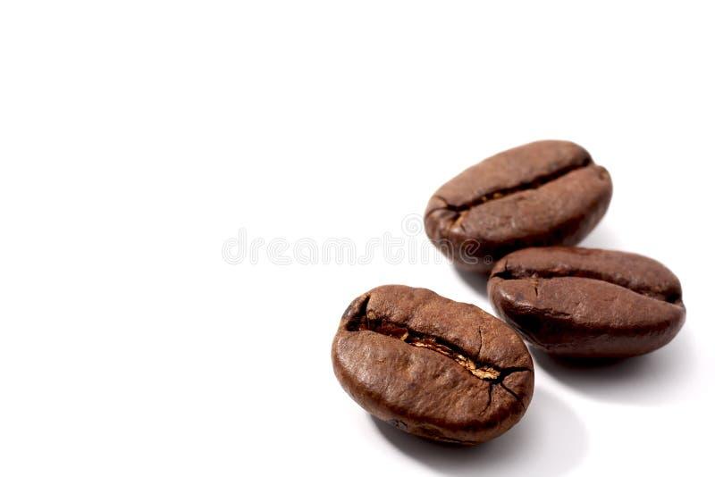 bönakaffe royaltyfria foton