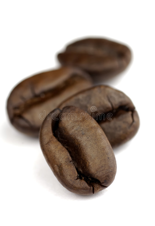 bönakaffemakro royaltyfri bild