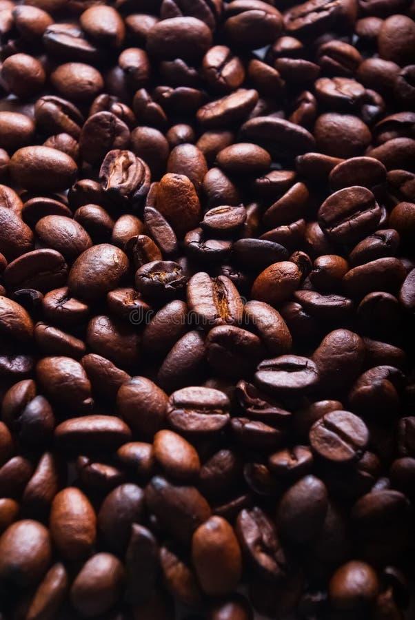 bönakaffevertical royaltyfri bild