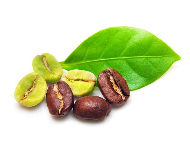 Bönor för grönt och svart kaffe. royaltyfri foto