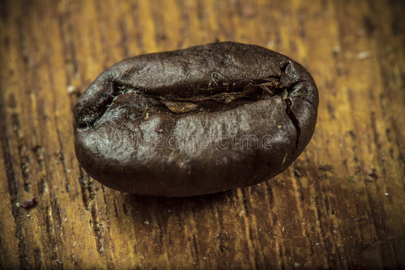 bönor frukosterar ideal isolerad makro för kaffe över white royaltyfria bilder
