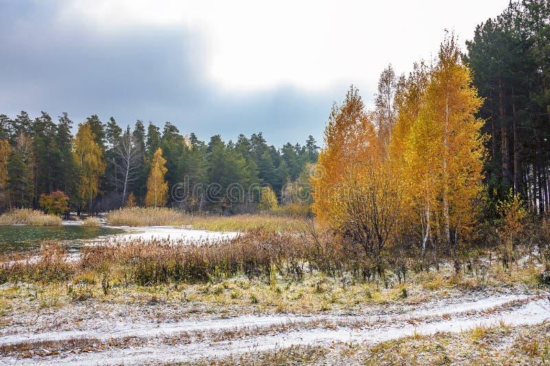 Början av den ryska vintern Sibirien kusten av nollan arkivfoto