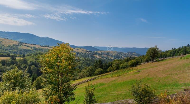 Början av hösten i Carpathiansna, fältbönor arkivbild