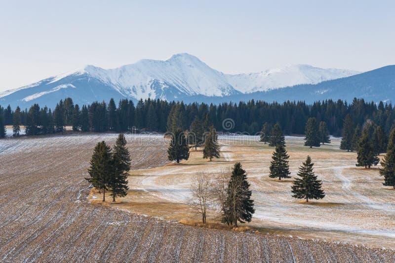 Början av vintern i den höga Tatrasen, Poprad dal, Slovakien Vinterlandskap av Tatra berg Snö-täckt dal med arkivbilder