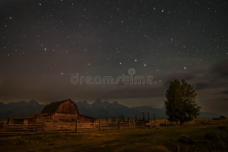 Búfalo grande 2 do parque nacional de Teton imagens de stock