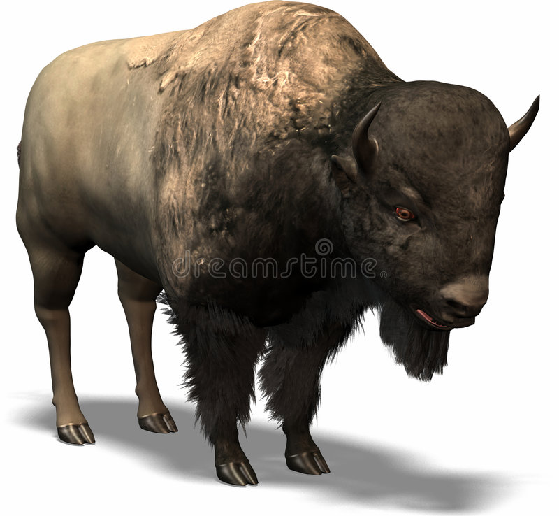 Búfalo occidental libre illustration