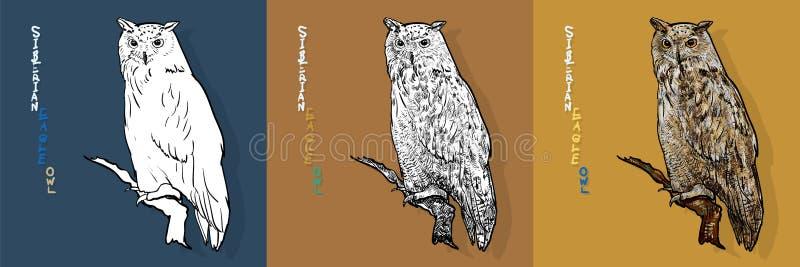 Búho de águila siberiano, o sibiricus del bubón del bubón Vector libre illustration