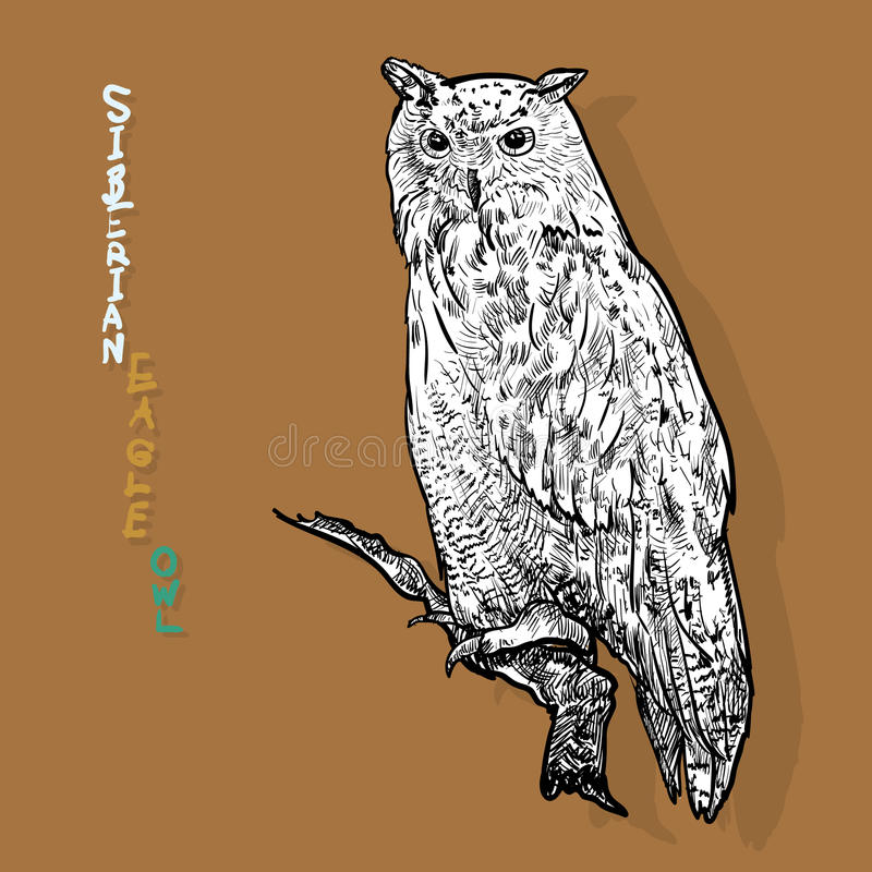 Búho de águila siberiano, o sibiricus del bubón del bubón Vector ilustración del vector