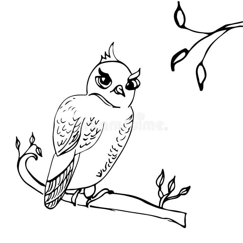 Búho dibujado mano que se sienta en una rama libre illustration