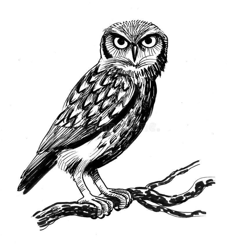 Búho en el árbol libre illustration