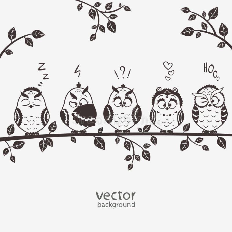 Búhos cinco ilustración del vector