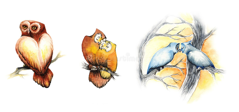 Búhos lindos de la acuarela ilustración del vector