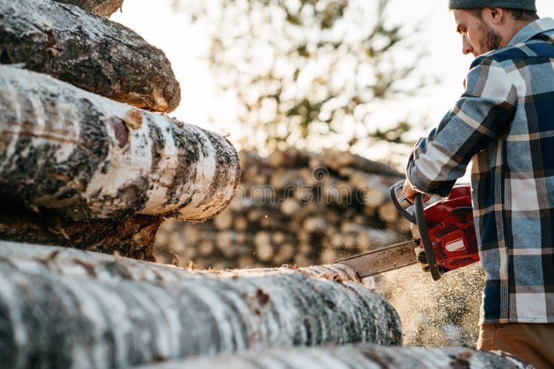 Bûcheron barbu fort dans l'arbre de sawing de chemise de plaid avec la tronçonneuse photographie stock libre de droits
