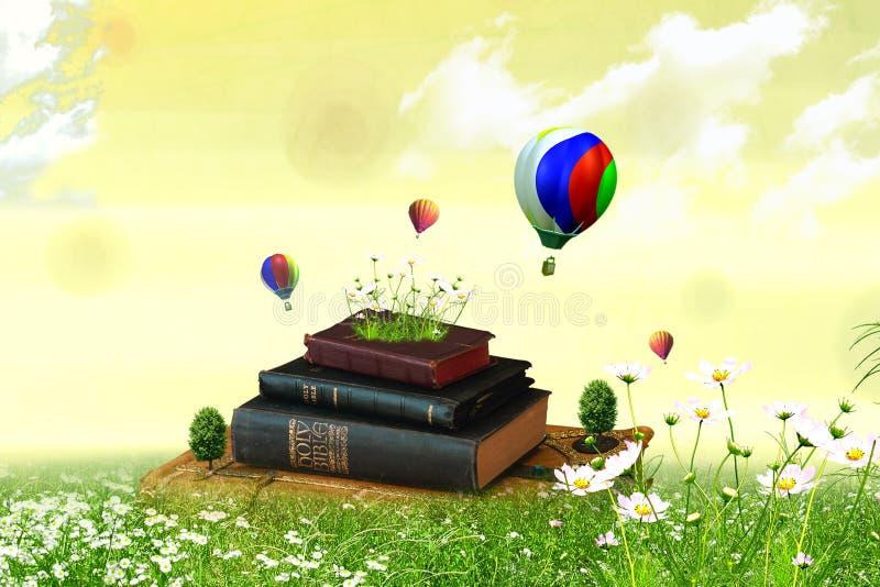 Bücher auf dem Feld lizenzfreie abbildung