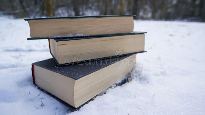 Bücher im Schnee stockfotografie