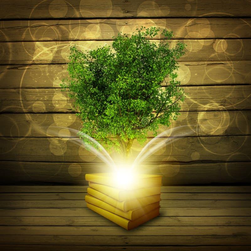 Bücher mit magischem grünem Baum und Strahlen des Lichtes lizenzfreie abbildung