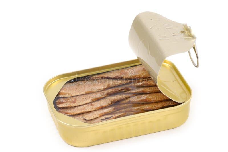 In Büchsen konservierte Sardinen von oben stockfotografie
