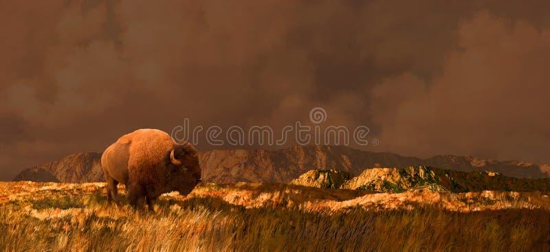 Büffel in Wyoming lizenzfreie abbildung