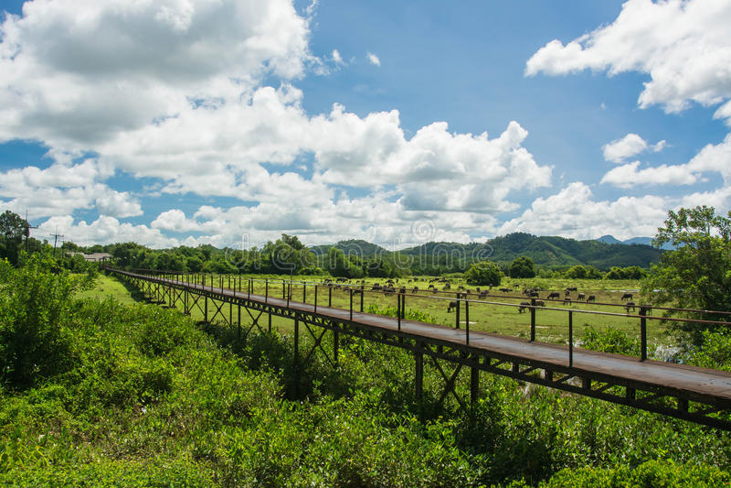 Bügeln Sie Brückenmarksteine bei Takuapa, Phangnga Thailand stockfotografie