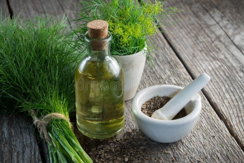 Bündel aromatischer frischer grüner Dill, Mörser der Fenchelsamen- und Dillölflasche stockfotos