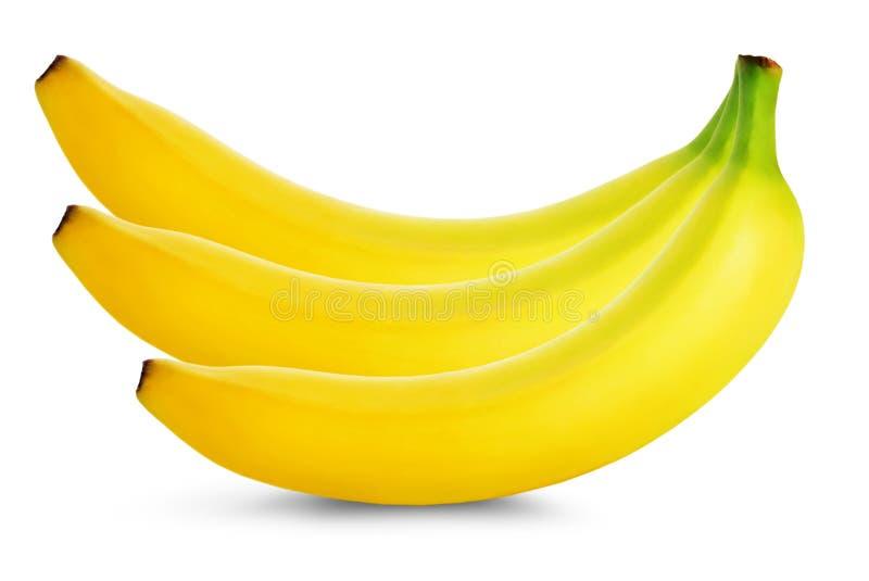 Bündel Bananen getrennt auf weißem Hintergrund lizenzfreie stockfotos