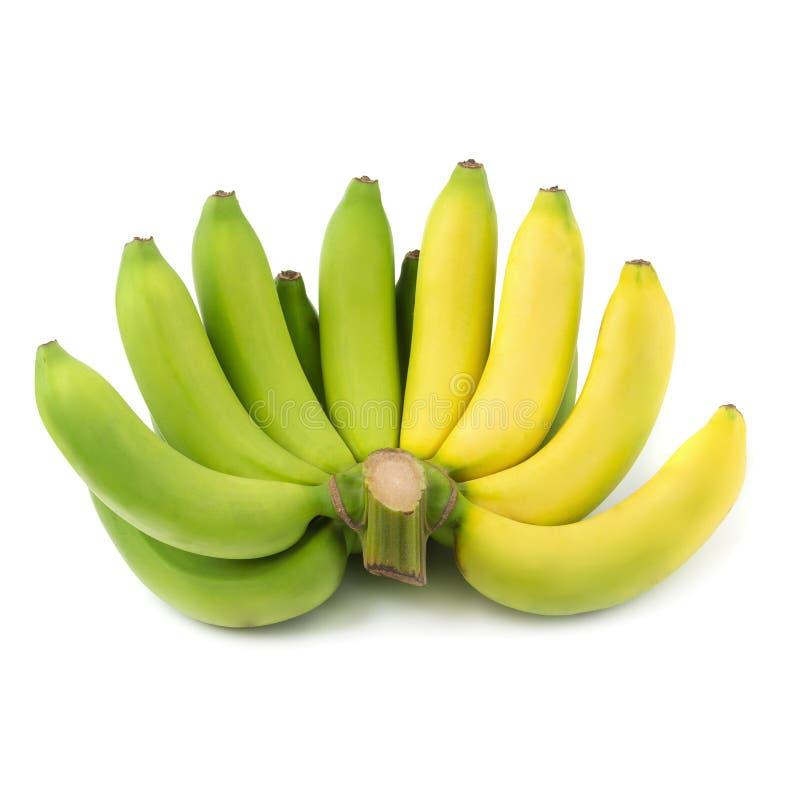 Bündel Bananen lokalisiert auf einem weißen Hintergrund stockbild