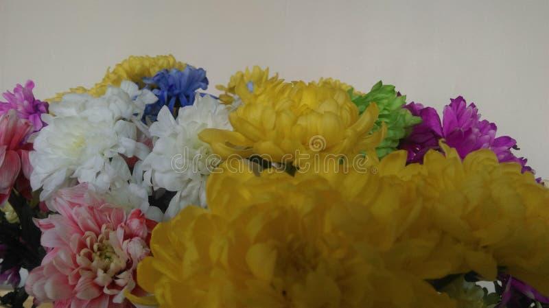 Bündel Blumen stockfotos