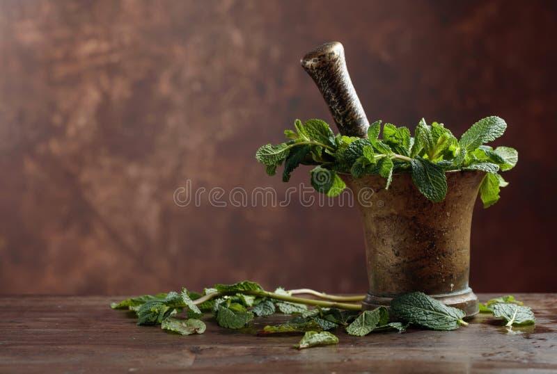 Bündel der frischen grünen organischen Minze im Mörser stockbild