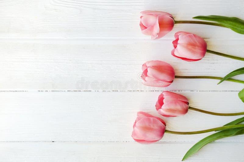Bündel der rosa Tulpe in der schönen Frühlingsfeiertagszusammensetzung, die auf weißem hölzernem strukturiertem Tabellenhintergru lizenzfreie stockfotografie