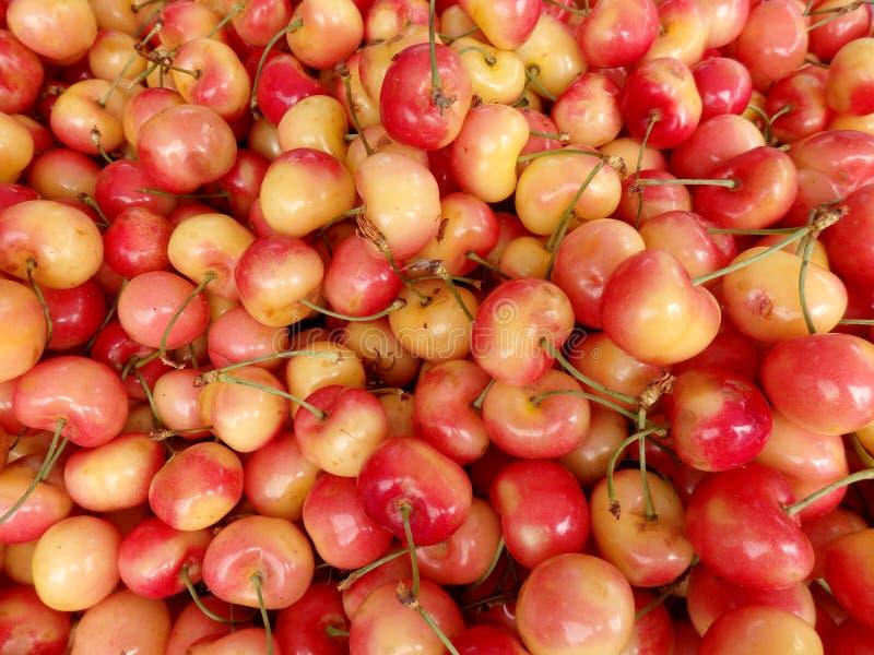 Bündel der roten und gelben Kirsche an einem Landwirtmarkt stockfoto