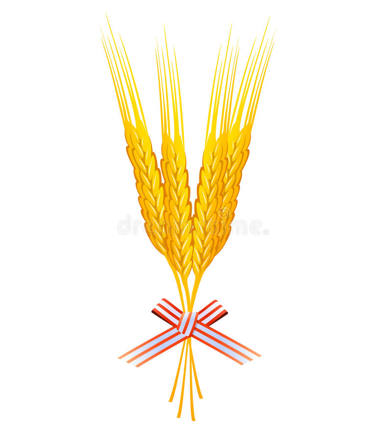 Bündel des Weizenkornvektors stock abbildung
