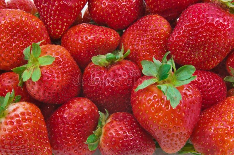 Bündel Erdbeeren stockfotos