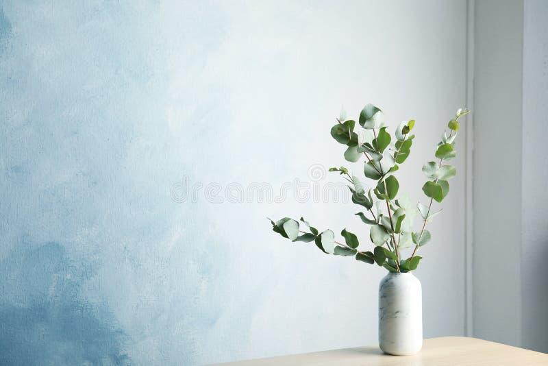 Bündel Eukalyptusniederlassungen mit frischen Blättern stockfotografie