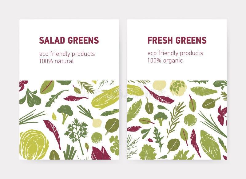 Bündel Flieger- oder Plakatschablonen mit grünem Gemüse, frischen Salatblättern, Gewürzkräutern und Platz für Text auf Weiß vektor abbildung