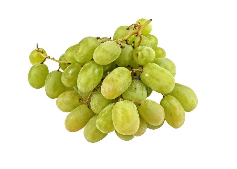 Bündel frische große grüne Trauben lizenzfreie stockbilder