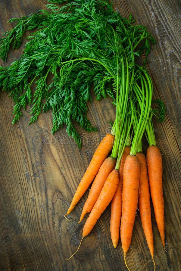 Bündel frische Karotten mit Grün lässt zurück stockfoto