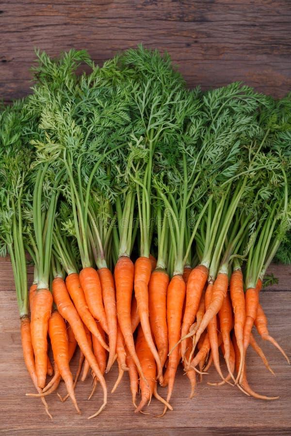 Bündel frische Karotten mit grünen Blättern stockfoto