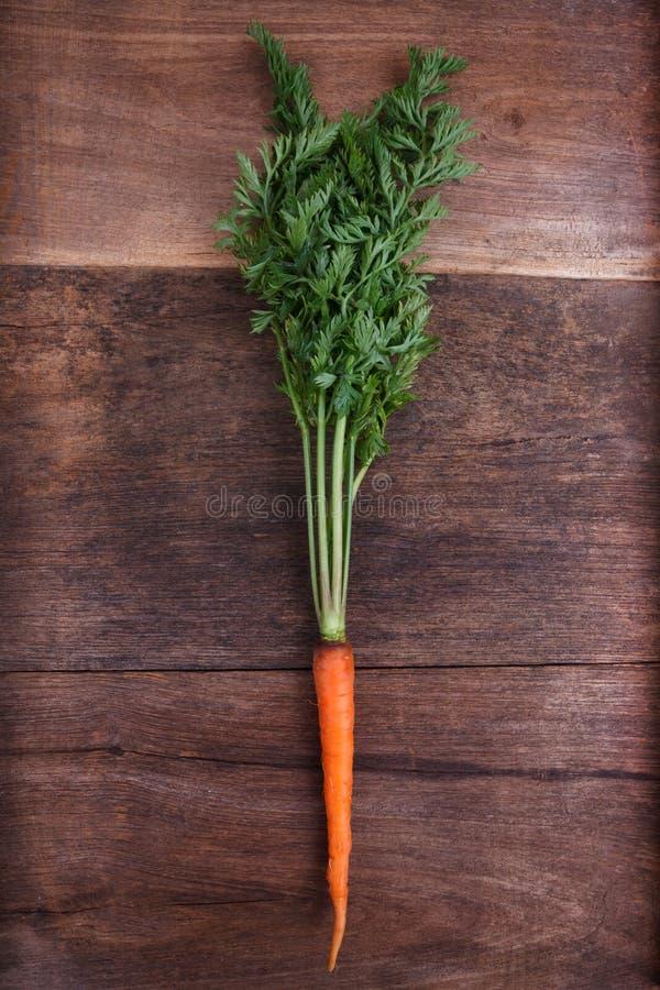 Bündel frische Karotten mit grünen Blättern lizenzfreie stockfotografie