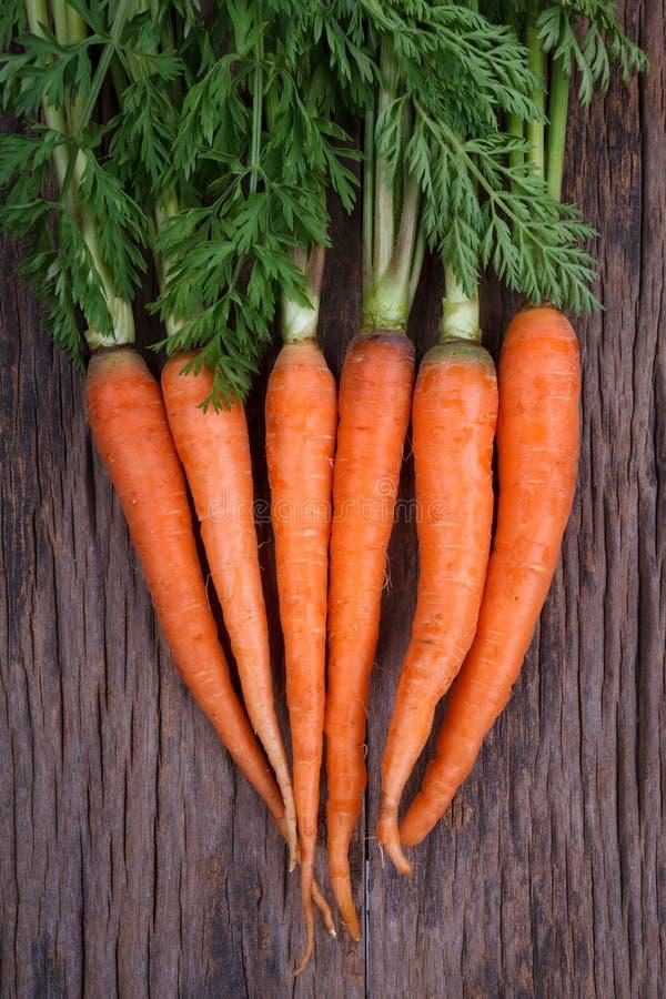 Bündel frische Karotten mit grünen Blättern lizenzfreies stockbild