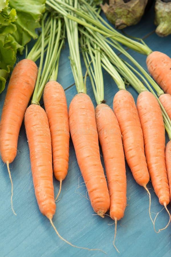 Bündel frische Karotten mit grünen Blättern lizenzfreie stockbilder
