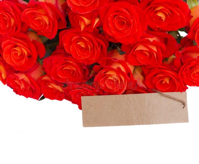 Bündel frische Orabge-Rosen mit Empty tag lizenzfreies stockbild