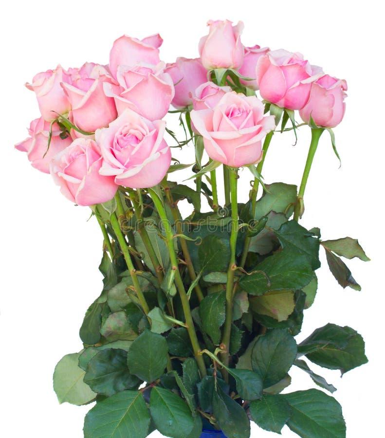 Bündel frische rosa Rosen lizenzfreie stockfotografie