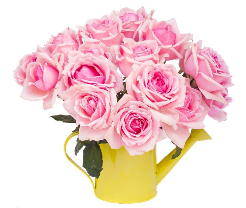 Bündel frische rosa Rosen lizenzfreie stockbilder