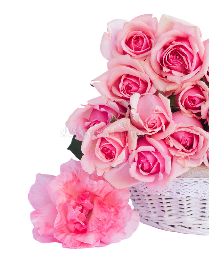 Bündel frische rosa Rosen stockfotos