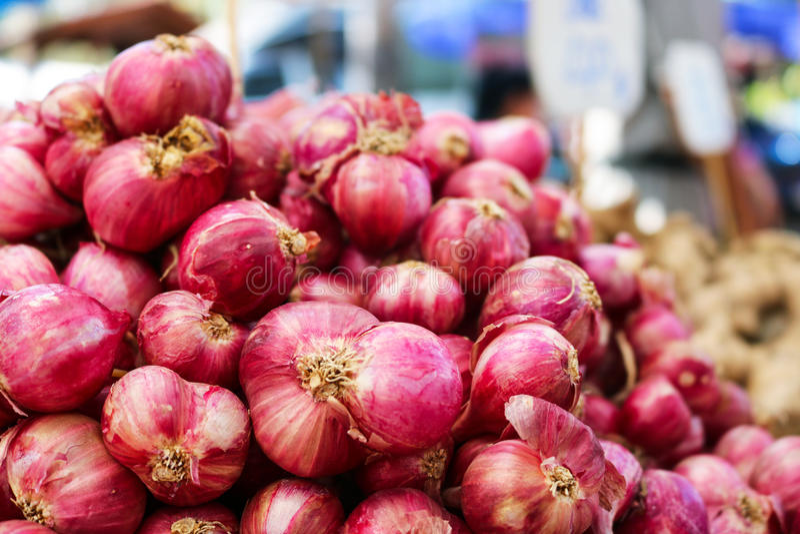Bündel frische Schalotten Rote Zwiebel Asiens Nutzen der Schalotte, Hel lizenzfreie stockbilder