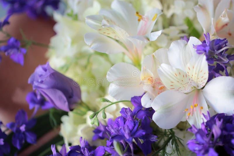 Bündel frische zarte Blumen stockfotografie